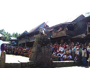 "Sport in Indonesia - Nias' ""leaping the stones"" ritual."