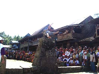 """Sport in Indonesia - Nias' """"leaping the stones"""" ritual."""