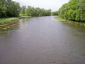 Long Prairie River - The Long Prairie River in Moran Township in 2007