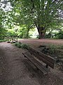 Long shot of the bench (OpenBenches 2107-1).jpg