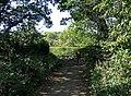 Looking back at the entrance to Shrawley Wood - geograph.org.uk - 1484844.jpg