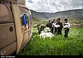 Lorestan flood10.jpg