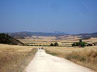 Los Arcos landscape.jpg