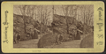 Lovers' Path, from Robert N. Dennis collection of stereoscopic views.png