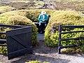 Luxurious Grouse Butt - geograph.org.uk - 414640.jpg