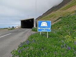 Múlagöng-west2010.jpg