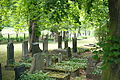 Mühlhausen Thüringen Jüdischer Friedhof 140.JPG