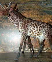 Girafe et archéologie dans GIRAFE 180px-MEPAN_Sivatherium
