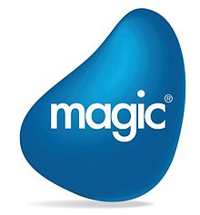 Magic Software.jpg
