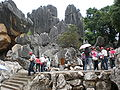 Major Stone Forest western section 05.JPG
