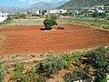 Malia 700 07, Greece - panoramio (21).jpg