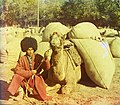 Man with camel loaded with packs LOC 9631427594 (cropped).jpg