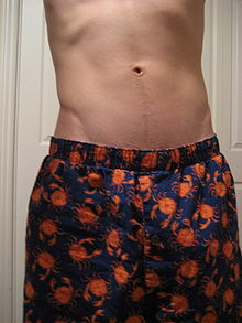 390265949b7077 Boxer (biancheria intima) - Wikipedia
