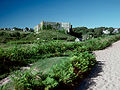 Manorbier Castle South Wales.jpg