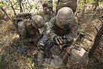 Marines conduct training patrols during Talisman Sabre 2015 071215-M-VM748-071.jpg