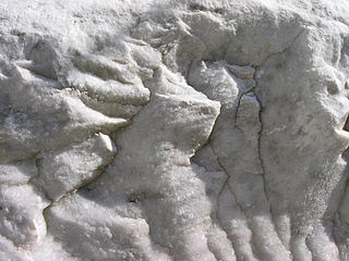 Marble non-foliated metamorphic rock commonly used for sculpture and as a building material
