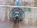 Mascherone Fontana Vecchia.jpg