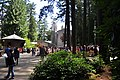 Mass on the plaza of The Grotto (Portland, Oregon), Chapel of Saint Mary in background 02.jpg