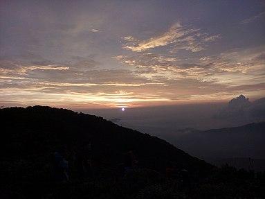 Image:Matahari.jpg