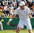 Matthias Bachinger 5, 2015 Wimbledon Qualifying - Diliff.jpg