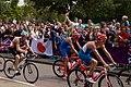 Men's Triathlon (8179879983).jpg