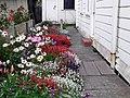Mendocino, California - 1528194764.jpg