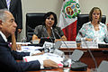 Ministra Ana Jara en comisión de la mujer (7027293165).jpg