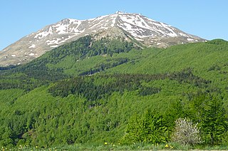 Apennine deciduous montane forests
