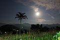 Moonlight (8184682777).jpg
