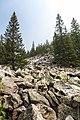 Moskal ridge (27939475833).jpg