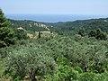 Mount Athos- Skiti Koutloumousiou 1.jpg