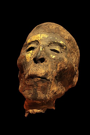 A mummified male head covered in electrum, from Ancient Egypt, Roman period, 2nd century CE (Musee des beaux-arts de Lyon). Mumified head IMG 0515.jpg