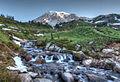 Myrtle Falls (9432570176).jpg