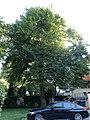 ND Wahnfriedstr 3 DSC01697.jpg