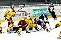 NLA, Rapperswil-Jona Lakers vs. Genève-Servette HC, 14th November 2014 51.JPG