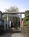 Naka-Hikawa-jinja (Tokorozawa Mikajima) 01.jpg