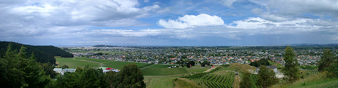 View of Napier from Sugar Loaf (behind Mission Winery)