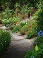 Napier botanical gardens shot 3.jpg