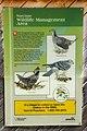 Narcisse Snake Dens Information Sign 06.jpg
