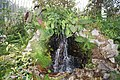 National Botanic Garden,Dublin,Ireland - panoramio (58).jpg