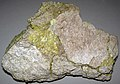 Native sulfur on siliceous sinter (Quaternary; Steamboat Springs, Nevada, USA) 1.jpg