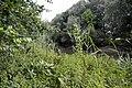 Naturschutzgebiet Haseder Busch - Innerste (16).jpg