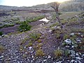 Navidhand Valley, Khyber Pakhtunkhwa , Pakistan - panoramio (33).jpg