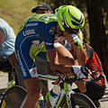 Nibali 2012 Tour de France.jpg