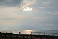 Niigata Prefectual Shiunji-Kinen park (36258485315).jpg