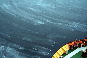 Sea ice - Nilas in Baffin Bay
