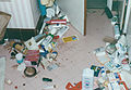Northridge Earthquake 1994 0005.jpg