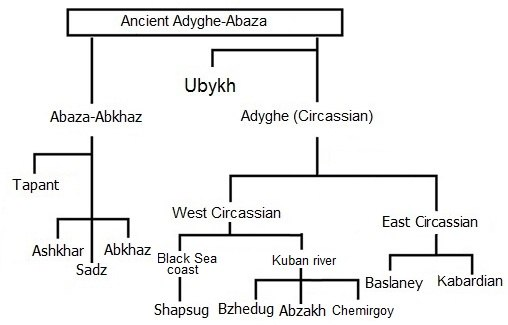 Northwest Caucasian Family Tree