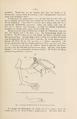 NovitatesZoologicae18 083.png
