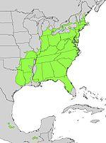 Nyssa sylvatica range map.jpg